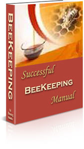 How to raise bees easy guide to beekeeping beginning beekeeping - Beekeeping beginners small business ...